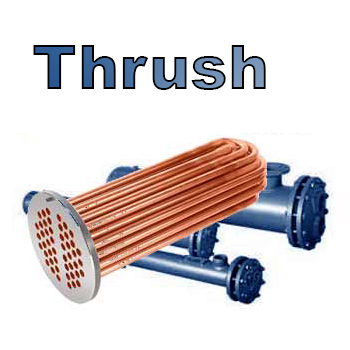 Thrush Steam to Liquid Double Wall Heat Exchanger
